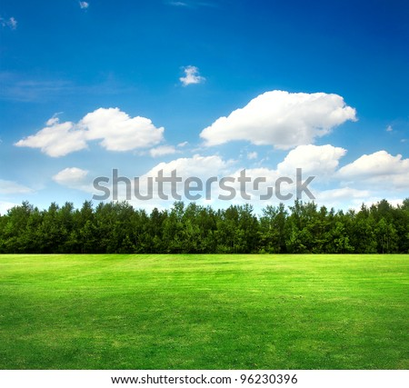 field, trees and blue sky #96230396