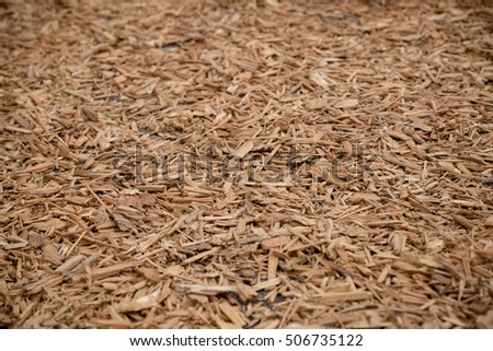 Field with wood chip during autumn