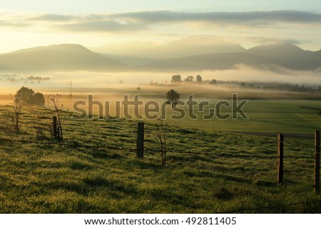 fields and landscape in the morning light #492811405