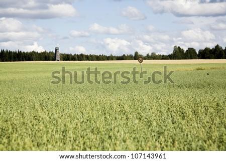 Fields, Haukivuori, Finland.
