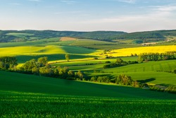 Fields in Moravian Tuscany at Sunset, South Moravian, Europe, Czech Republic