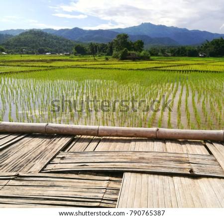 Fields mountains in thailand landscape #790765387