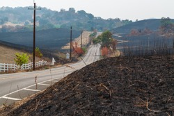Fields Scorched by Wildfire Northern California