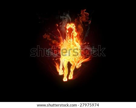 Fiery stallion. Horse