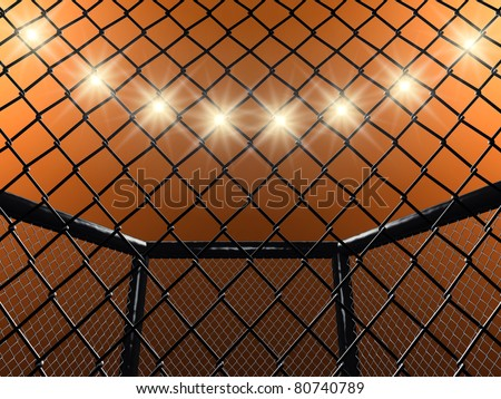 Fight cage 3D illustration