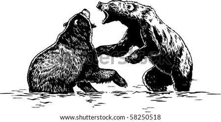 Fight of bears