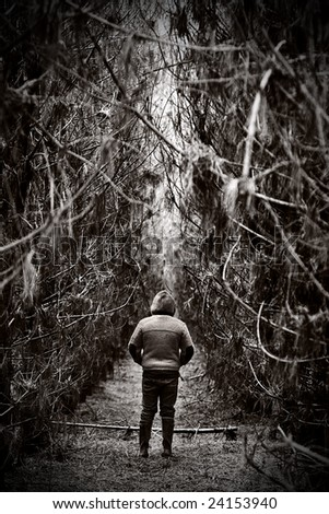 Figure Facing Away in Dense Forest Path