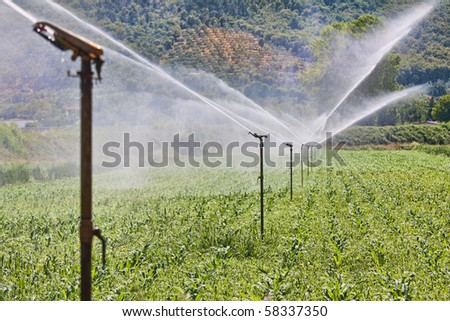 Figure shows how the field is irrigated - stock photo