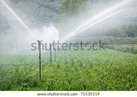 Figure shows how the field is irrigated
