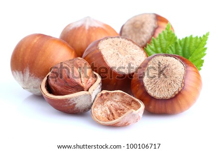 Filbert nuts with leaves