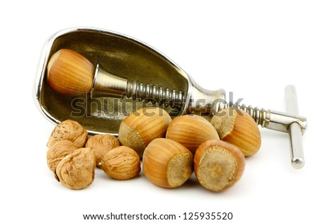 filberts or hazelnuts and a nut cracker in the studio  Good source of essential nutrients.