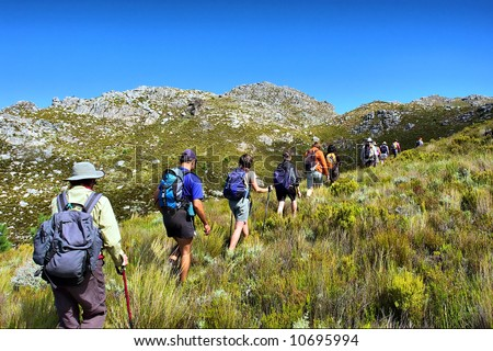 File of hikers walks in mountains. Shot on Pieke, Jonkershoek Nature Reserve, near Stellenbosch, Western Cape, South Africa.
