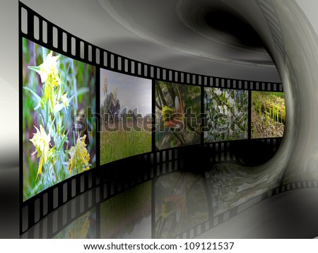 Film roll with color pictures (nature) in the tunnel.