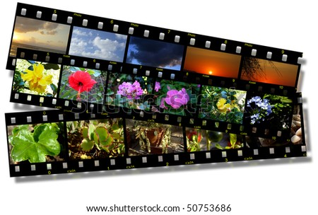 film strips with various nature photo
