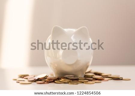 Finance white piggy bank   #1224854506