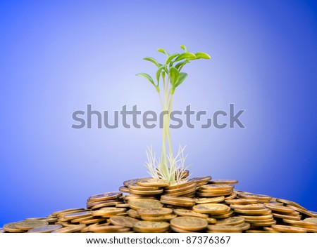 Financial concept with seedlings and coins