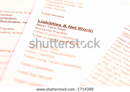 "Financial documents with focus on words ""Liabilities & Net Worth"". Very easy to shift colours."