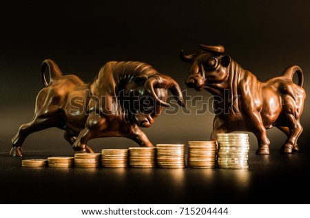 Financial investment in bull market. How to trade in risk valuation situation. Money was allocate to portfolio efficiency. Investor can get more capital gain and dividend