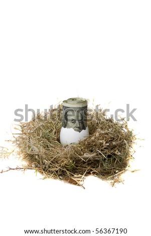"Financial Nest Egg concept $100.00 (one hundred dollar bills) rolled up inside a bird egg inside a bird nest ""isolated on white"""