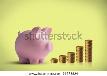 Financial Piggy Bank