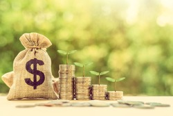 Financing sustainable growth, financial concept : Green sprout grow on coins, US dollar money bag on table, depicts passive income, wealth management from revenue growth, common stock dividend payout