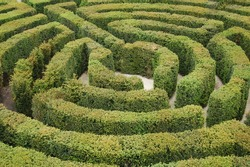Find the way out from the labyrinth