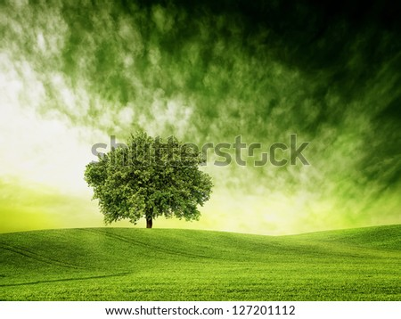 Find time for green time