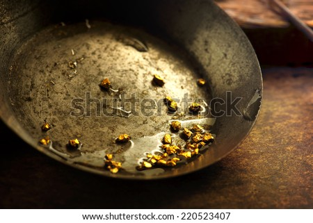 Finding gold. gold panning or digging. Gold on wash pan. #220523407