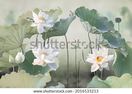 Fine art - Beautiful white lotus flower and lotus flower plants, pure white lotus flower