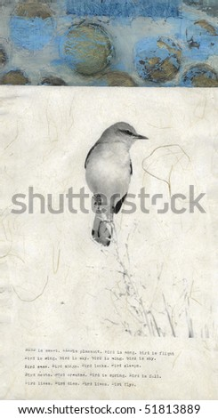 Fine art collage of a mockingbird photograph printed on asian paper with abstract painting and typewriter poem.