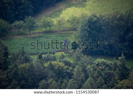 Fine art color idyllic landscape countryside image of a lookout on a green field surrounded by a forest in vintage painting style taken on a misty summer day