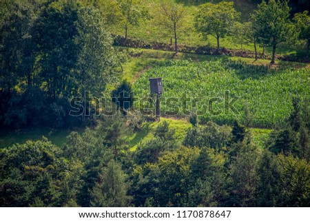 Fine art color idyllic landscape countryside image of a lookout on a green field surrounded by a forest in vintage / retro style