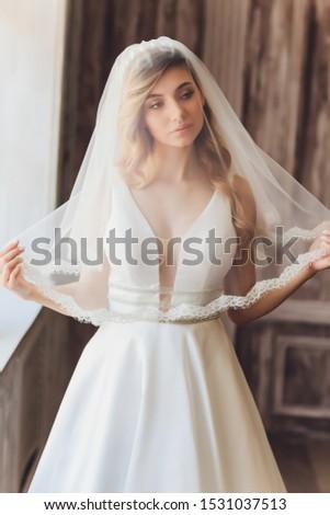 Fine-art portrait of elegant girl in veil.