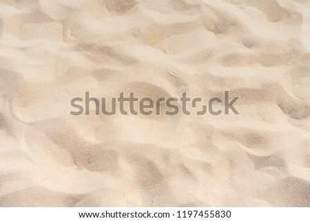 Fine beach sand in the summer sun #1197455830