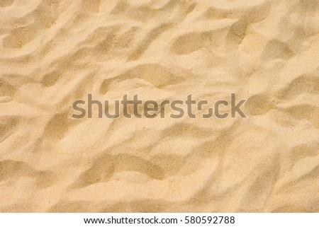 Fine beach sand in the summer sun sandy trails #580592788