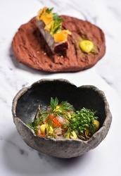Fine dine Venison tartar and carpaccio