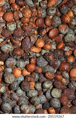 fine macro image of pepper seed spice texture