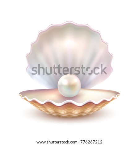 Finest quality beautiful natural open pearl shell close up realistic single valuable object image  illustration