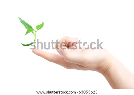 Finger supporting a new plant