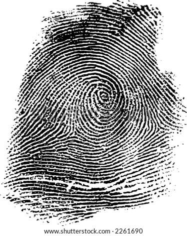 Fingerprint Illustration - stock photo