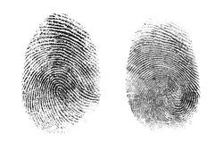 fingerprint or thumbprint set isolated on white