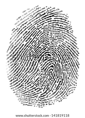 Fingerprint pattern isolated on white background