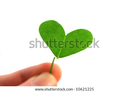 fingers holding a clover heart on a white background