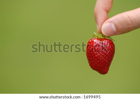 Fingers holding ripe strawberry