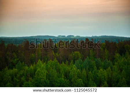 Finland landscape of forest and sunset. #1125045572