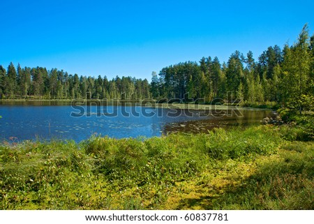 Finnish landscape: Wild forrest and lake