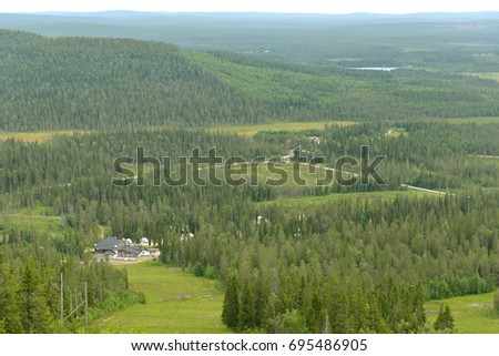 Finnish Lapland. Northern forests #695486905