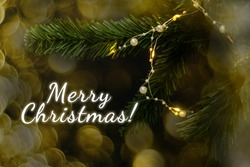 Fir branch with garland and Merry Christmas.
