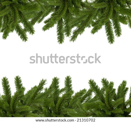 Fir decoration with space for your text
