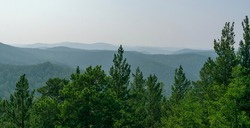 Fir green trees. Embossed mountains over the horizon. Fog, sky. Mountainous landscape concept.